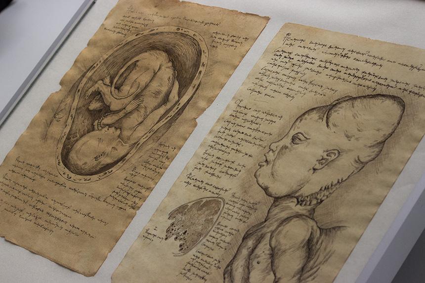 ... Zeichnungen von Moritz Krebs, ...