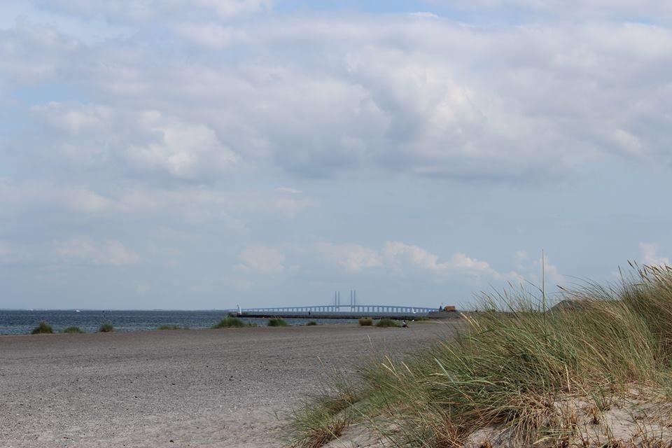Amager Strand mit Blick auf die Øresundsbron. Dieser Strand hat seine eigene Metrohaltestelle. Foto: privat