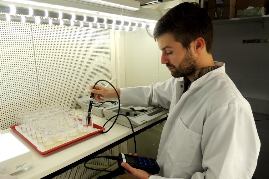 Welche Auswirkungen Nanopartikel auf die Umwelt haben, kann Dr. Seitz im Labor im Insitut für Umweltwissenschaften am Campus Landau messen. Foto: Leyerer