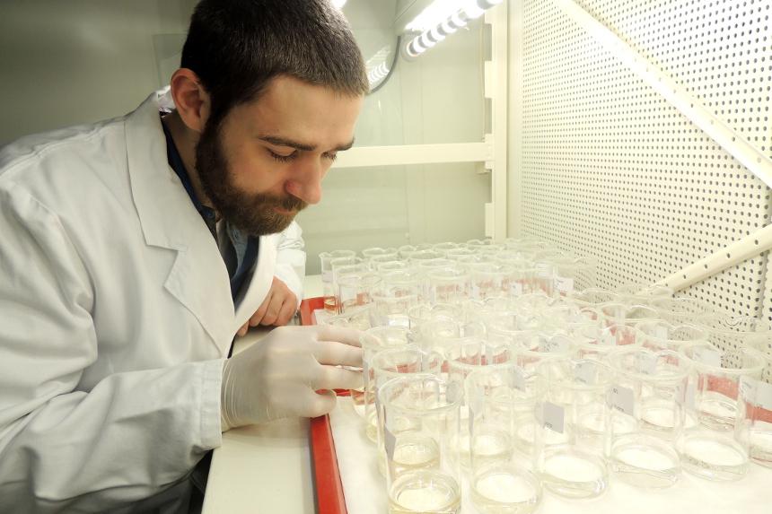 Ricki Rosenfeldt führt Tests im Labor durch. Foto: Leyerer