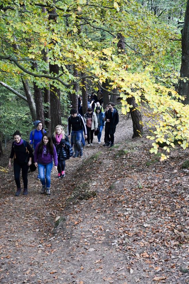 """""""Walk the Wasgau"""": Jedes Semester bietet die Katholische Hochschulgemeinde eine Wanderung durch den Wasgau an. Foto: Körber"""