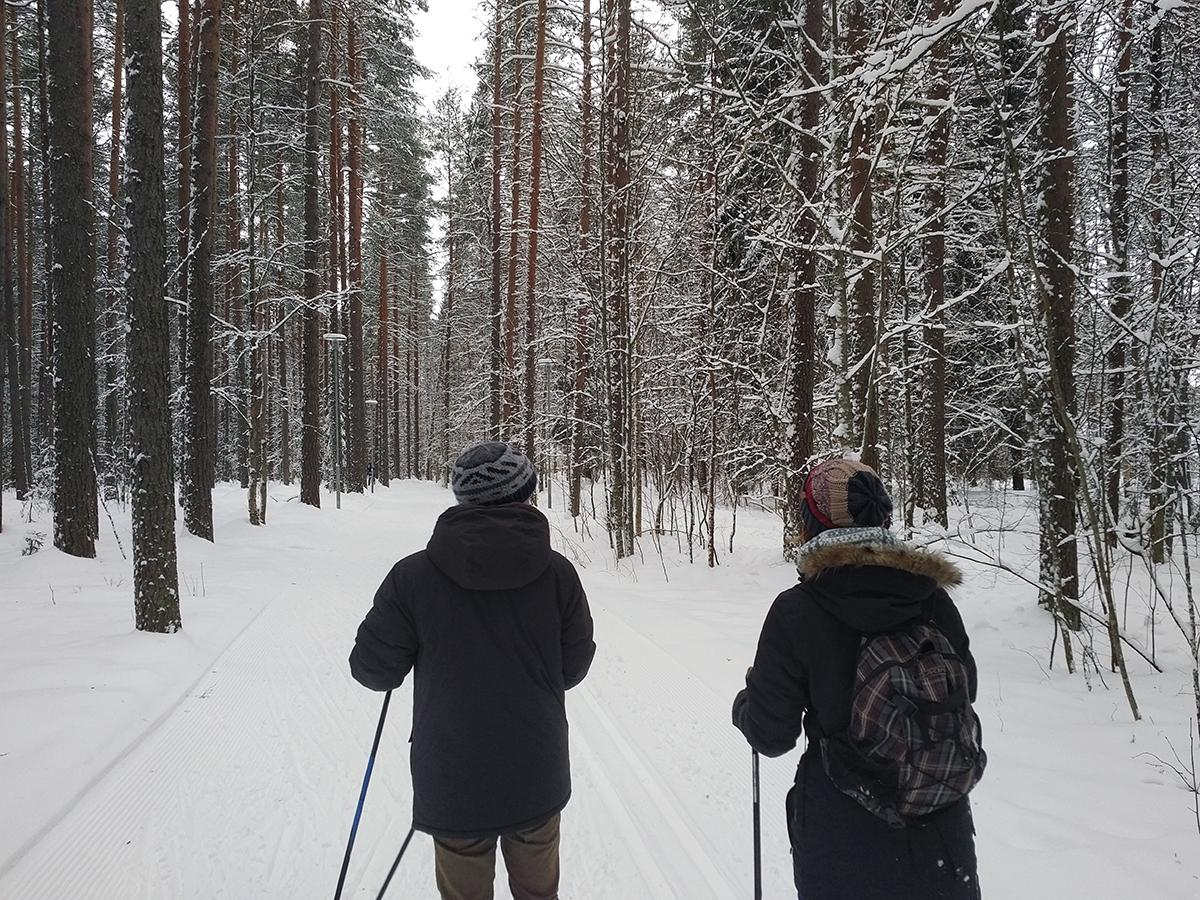 Ausgedehnte Wanderungen über Eisstraßen und durch verschneite Wälder machen Finnland zu einem echten Wintermärchen.